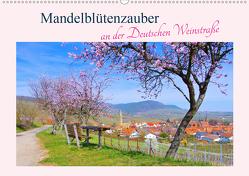 Mandelblütenzauber an der Deutschen Weinstraße (Wandkalender 2021 DIN A2 quer) von LianeM