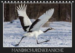 Mandschurenkraniche (Tischkalender 2019 DIN A5 quer) von Schwarz Fotografie,  Thomas