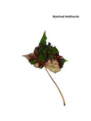 Manfred Holtfrerich. Blätter 1 – 236 von Grunenberg,  Christoph, Kunsthalle Bremen