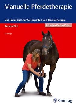 Manuelle Pferdetherapie von Ettl,  Renate