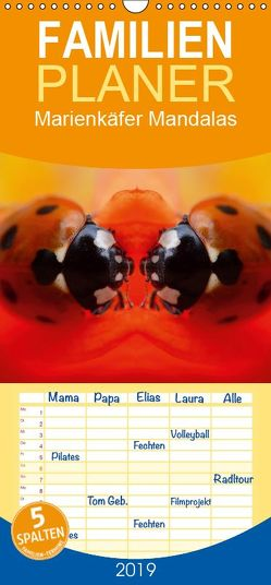 Marienkäfer Mandalas – Familienplaner hoch (Wandkalender 2019 <strong>21 cm x 45 cm</strong> hoch) von Zänkert,  Martin