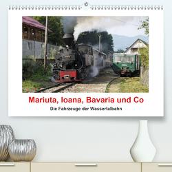 Mariuta, Ioana, Bavaria und Co (Premium, hochwertiger DIN A2 Wandkalender 2020, Kunstdruck in Hochglanz) von Hegerfeld-Reckert,  Anneli