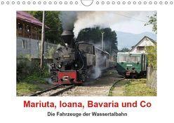 Mariuta, Ioana, Bavaria und Co (Wandkalender 2019 DIN A4 quer) von Hegerfeld-Reckert,  Anneli