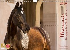 Marwaris – Die magischen Pferde Indiens (Wandkalender 2019 DIN A4 quer) von by MMK - Miriam Melanie Köhler,  Picstories