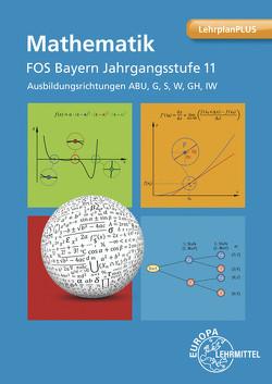 Mathematik FOS/BOS Bayern Jahrgangsstufe 11 von Dillinger,  Josef, Grimm,  Bernhard, Gumpert,  Frank-Michael, Mack,  Gerhard, Mueller,  Thomas, Schiemann,  Bernd