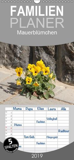 Mauerblümchen – Familienplaner hoch (Wandkalender 2019 <strong>21 cm x 45 cm</strong> hoch) von Sprenger,  B.