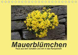 Mauerblümchen – Raus aus dem Schatten und rein in das Rampenlicht (Tischkalender 2019 DIN A5 quer) von Keller,  Angelika