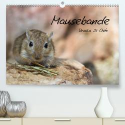 Mausebande (Premium, hochwertiger DIN A2 Wandkalender 2021, Kunstdruck in Hochglanz) von Di Chito,  Ursula