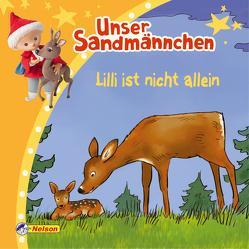 Maxi-Mini 93: Unser Sandmännchen: Lilli ist nicht allein