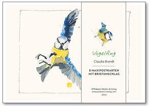 Maxi-Postkarten-Serie Vogelflug von Brandt,  Claudia