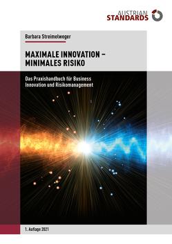 Maximale Innovation – Minimales Risiko von Streimelweger,  Barbara