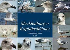 Mecklenburger Kapitänshühner (Wandkalender 2019 DIN A2 quer) von Felix,  Holger