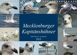 Mecklenburger Kapitänshühner (Wandkalender 2019 DIN A4 quer) von Felix,  Holger