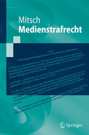 Medienstrafrecht von Mitsch,  Wolfgang