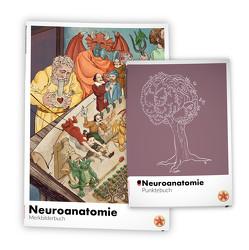 Meditricks Neuroanatomie