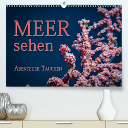 Meer sehen – Abenteuer Tauchen (Premium, hochwertiger DIN A2 Wandkalender 2020, Kunstdruck in Hochglanz) von Gödecke,  Dieter