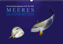 Meeres Schönheiten (Wandkalender 2019 DIN A3 quer) von Melz,  Tina