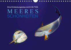 Meeres Schönheiten (Wandkalender 2019 DIN A4 quer) von Melz,  Tina