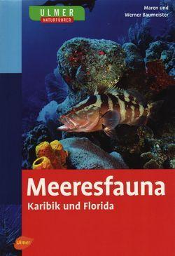 Ulmer Naturführer Meeresfauna Karibik und Florida von Baumeister,  Werner