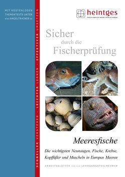 Meeresfische von Bayrle,  Hermann, Heintges,  Wolfgang