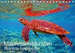 Meeresschildkröten – Bedrohte Schönheiten (Tischkalender 2019 DIN A5 quer) von Hess,  Andrea