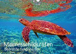 Meeresschildkröten – Bedrohte Schönheiten (Wandkalender 2018 DIN A3 quer) von Hess,  Andrea