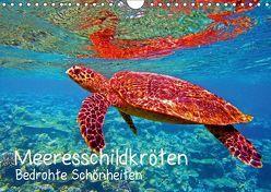 Meeresschildkröten – Bedrohte Schönheiten (Wandkalender 2018 DIN A4 quer) von Hess,  Andrea