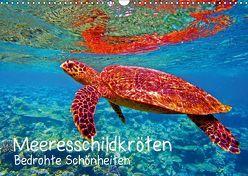 Meeresschildkröten – Bedrohte Schönheiten (Wandkalender 2019 DIN A3 quer) von Hess,  Andrea