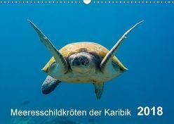 Meeresschildkröten der Karibik (Wandkalender 2018 DIN A3 quer) von - Yvonne & Tilo Kühnast,  naturepics