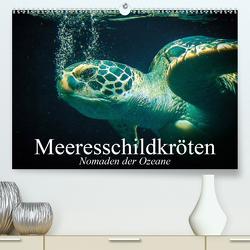 Meeresschildkröten. Nomaden der Ozeane (Premium, hochwertiger DIN A2 Wandkalender 2021, Kunstdruck in Hochglanz) von Stanzer,  Elisabeth
