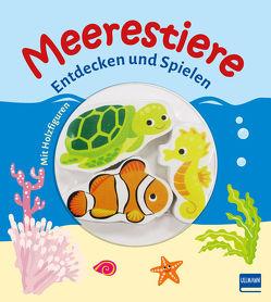 Meerestiere von Gruber,  Denitza