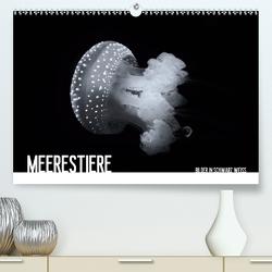 Meerestiere Bilder in Schwarz Weiss (Premium, hochwertiger DIN A2 Wandkalender 2021, Kunstdruck in Hochglanz) von Meutzner,  Dirk