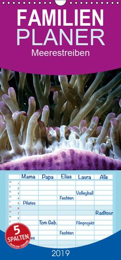 Meerestreiben – Unterwasser – Familienplaner hoch (Wandkalender 2019 , 21 cm x 45 cm, hoch) von Weiss,  Michael