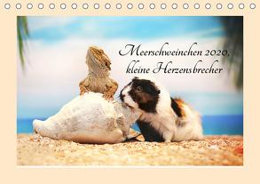 Meerschweinchen 2020, kleine Herzensbrecher (Tischkalender 2020 DIN A5 quer) von Foto Grafia Fotografie,  Anja