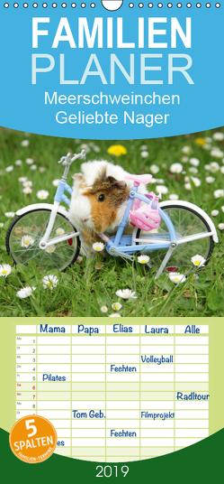 Meerschweinchen. Geliebte Nager – Familienplaner hoch (Wandkalender 2019 , 21 cm x 45 cm, hoch) von Stanzer,  Elisabeth