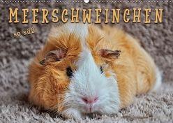 Meerschweinchen – so süß (Wandkalender 2018 DIN A2 quer) von Roder,  Peter