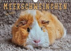 Meerschweinchen – so süß (Wandkalender 2018 DIN A4 quer) von Roder,  Peter