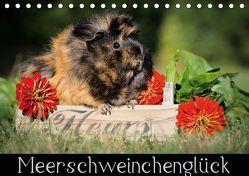 Meerschweinchenglück (Tischkalender 2019 DIN A5 quer) von Scharnberg,  Sabine