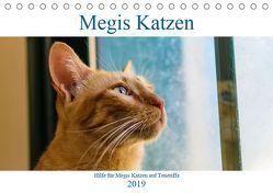 Megis Katzen (Tischkalender 2019 DIN A5 quer) von Kovac,  Megi