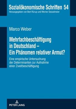 Mehrfachbeschäftigung in Deutschland – Ein Phänomen relativer Armut? von Weber,  Marco