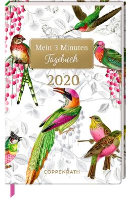 Mein 3 Minuten Tagebuch 2020 (Bunte Vögel) von Behr,  Barbara