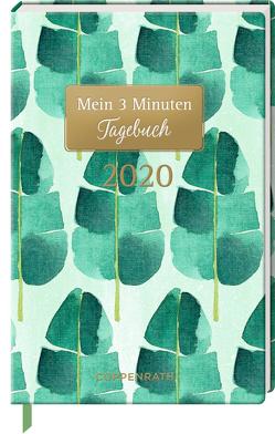 Mein 3 Minuten Tagebuch 2020 (Palmenblätter)