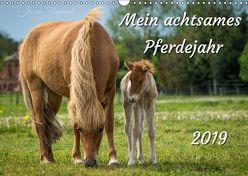 Mein achtsames Pferdejahr 2019 (Wandkalender 2019 DIN A3 quer) von Freymark,  Jessica
