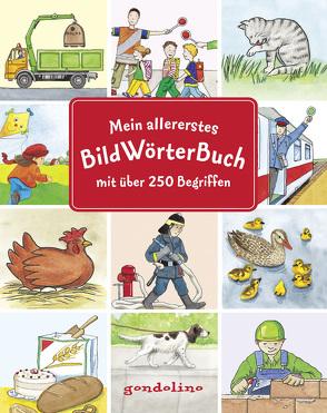Mein allererstes Bildwörterbuch mit über 250 Begriffen von Bietz,  Christine, Ebert-Leifeld,  Anne, Guhe,  Irmtraud, Jelenkovich,  Barbara, Leberer,  Sigrid