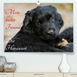Mein bester Freund – Der Hovawart (Premium, hochwertiger DIN A2 Wandkalender 2020, Kunstdruck in Hochglanz) von Starick,  Sigrid