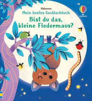 Mein buntes Gucklochbuch: Bist du das, kleine Fledermaus? von Kimpimaki,  Essi, Taplin,  Sam
