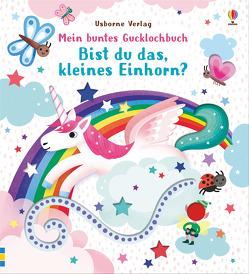 Mein buntes Gucklochbuch: Bist du das, kleines Einhorn? von Allen,  Sarah, Taplin,  Sam