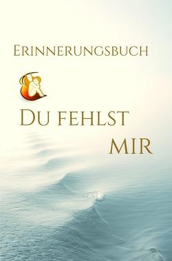 Mein Erinnerungsbuch von Voisin,  Jan