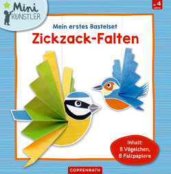 Mein erstes Bastelset: Zickzack-Falten von Sent,  Anne