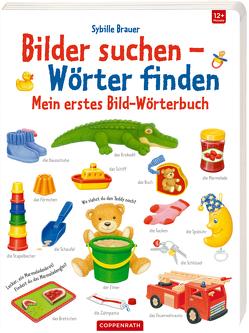Mein erstes Bild-Wörterbuch von Brauer,  Sybille